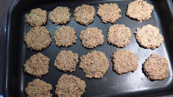 oatmeal-cinnamon-chilly-cookies-08